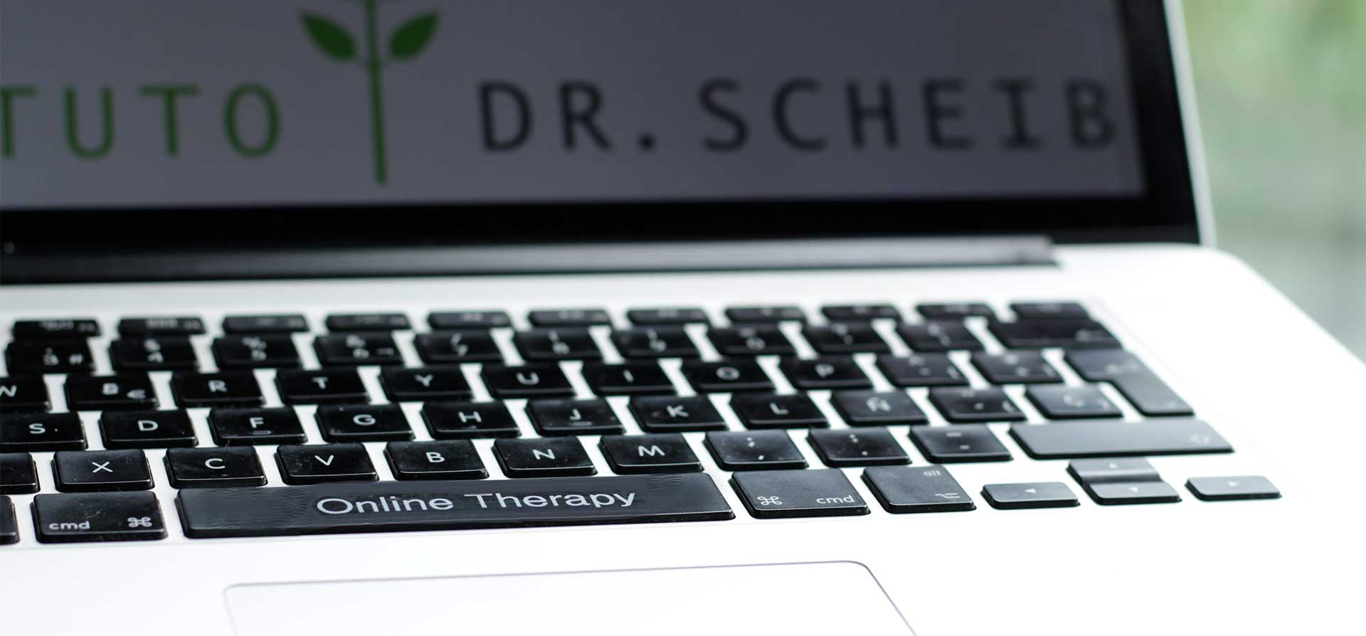 psychotherapy online or via telephone